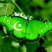 Opportunity Pakistan