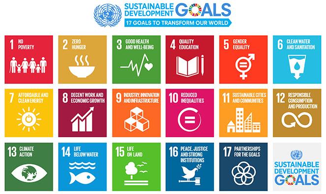 UN Sustainable Development Goals (SDGs)